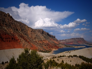 The Green River at Flaming Gorge Reservoir (Richard E. Saunier)